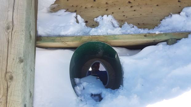 Looking through the poopshoot :)