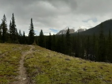 Cruisey trail
